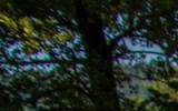 DSC_8805_1.jpg