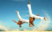 Delavnica Capoeire delavnica brazilske plesno borilne veščine