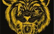 Zverinski Hip Hop Koncert: Tekochee Kru   posebni gost