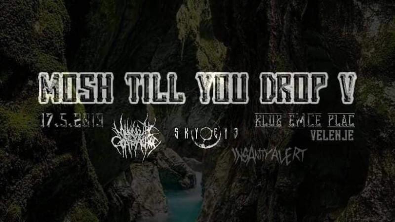 Mosh till you Drop V (Official MetalDays warm up)